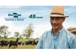 Caprileite/ACCOMIG E CAPRAGENE NA SOLENIDADE COMEMORATIVA DOS 45 ANOS DA EMBRAPA CAPRINOS E OVINOS