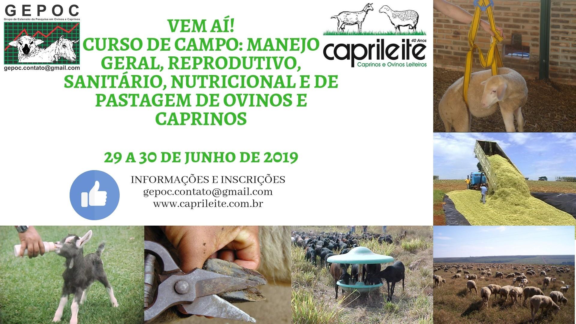 CURSO NO CAMPOMANEJO GERALREPRODUTIVOSANITÁRIONUTRICIONAL E DE PASTAGEM DE OVINOS E CAPRINOS 29 E 30 DE JUNHO DE 2019