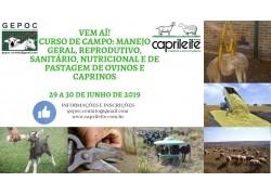 CURSO NO CAMPO: MANEJO GERAL, REPRODUTIVO, SANITÁRIO, NUTRICIONAL E DE PASTAGEM DE OVINOS E CAPRINOS 29 E 30 DE JUNHO DE 2019
