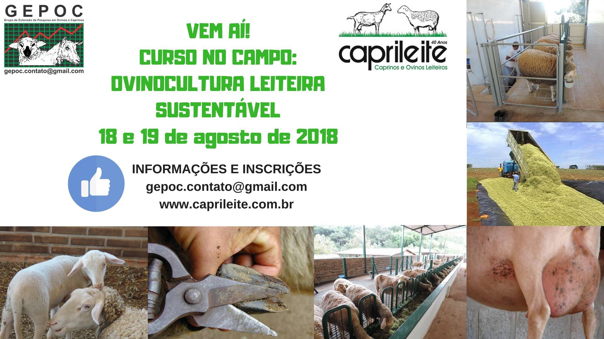 CURSO NO CAMPOOVINOCULTURA LEITEIRA SUSTENTÁVEL 18 e 19/08/2018 PARTICIPE!