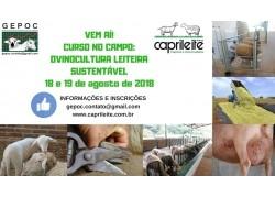 CURSO NO CAMPO: OVINOCULTURA LEITEIRA SUSTENTÁVEL 18 e 19/08/2018 PARTICIPE!