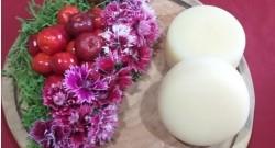 Emater-DF estimula produção de plantas não convencionais com alto valor nutricional