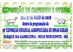 EXPOSIÇÃO DE CAPRINOS E OVINOS 22 a 27/05/2018