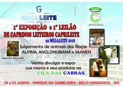 1ª EXPOSIÇÃO DE CAPRINOS LEITEIROS ACCOMIG/CAPRILEITE - 1º LEILÃO DE CAPRINOS LEITEIROS  CAPRAGENE®- ACCOMIG/CAPRILEITE NA MEGALEITE 2018 DE 20 A 23 DE JUNHO DE 2018