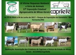III VITRINE PEQUENOS NOTÁVEIS E FEIRA DE ANIMAIS DE 29 de maio a 04/06/2017 PARTICIPE!