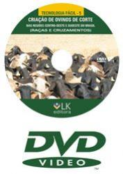 DVD Criação de ovinos de corte nas regiões Centro-Oeste e Sudeste do Brasil (raças e cruzamentos)