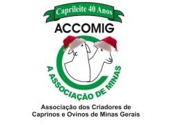 RECESSO FINAL DE ANOACCOMIG/Caprileite