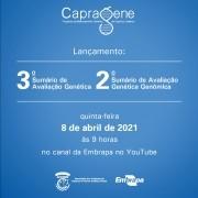 LANÇAMENTO : 3º SUMÁRIO DE AVALIAÇÃO GENÉTICA E 2º SUMÁRIO DE AVALIAÇÃO GENÉTICA GENÔMICA 08/04/2021