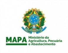 NOVO MANUAL GTA DE OVINOS E CAPRINOS DO MAPA VERSÃO 8.0
